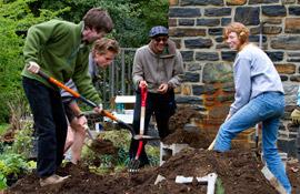 Installing a community garden plot