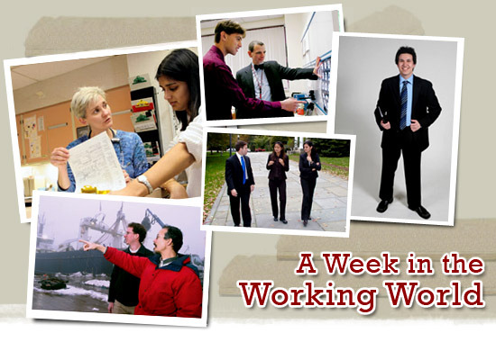 A Week in the Working World
