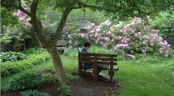 Woman reading on a garden bench