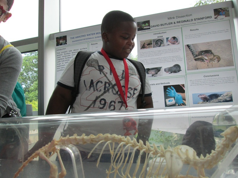 2012 SFK Science Fair 7