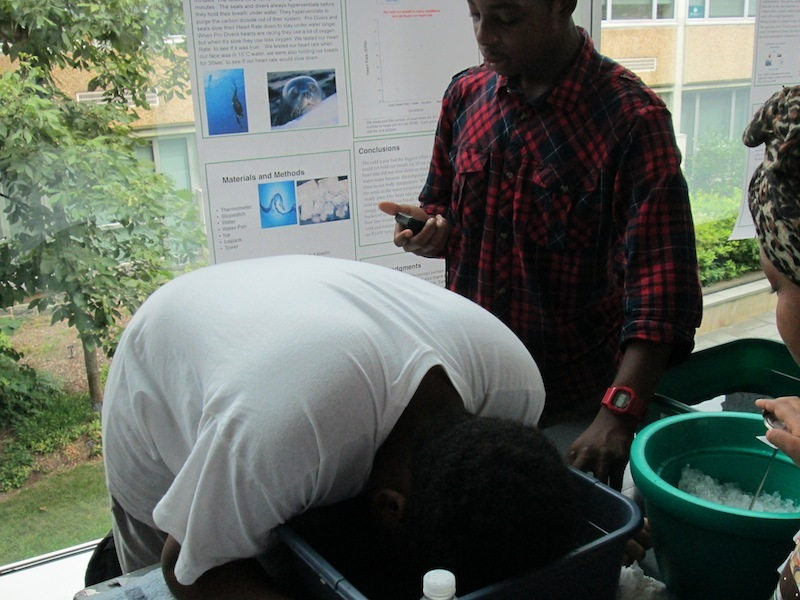 2012 SFK Science Fair 11