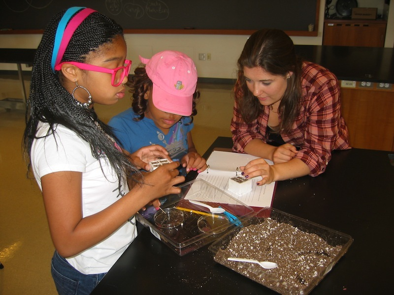 2012 SFK Bio Lab 2