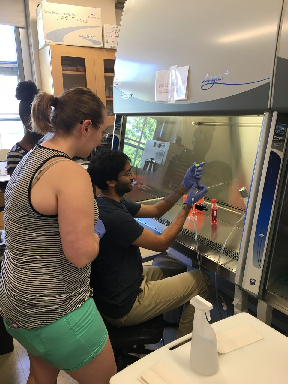 Rajiv Potluri '20 working at a biosafety cabinet with two students observing