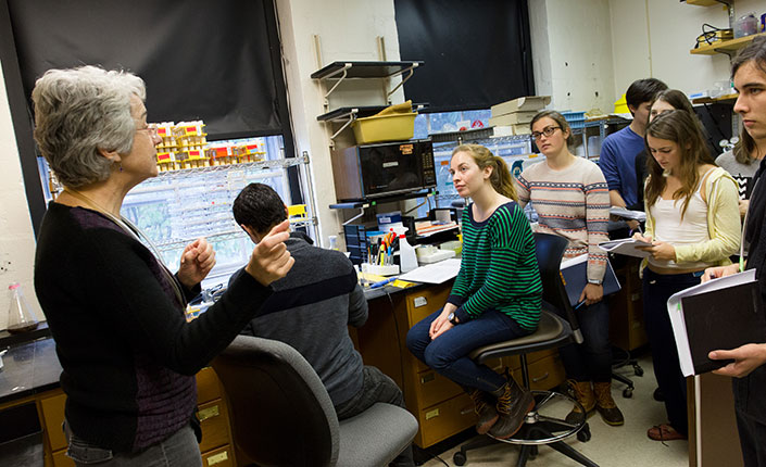Biology professor Kathy Siwicki in her lab