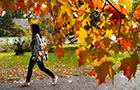 Student walks with leaves in foreground