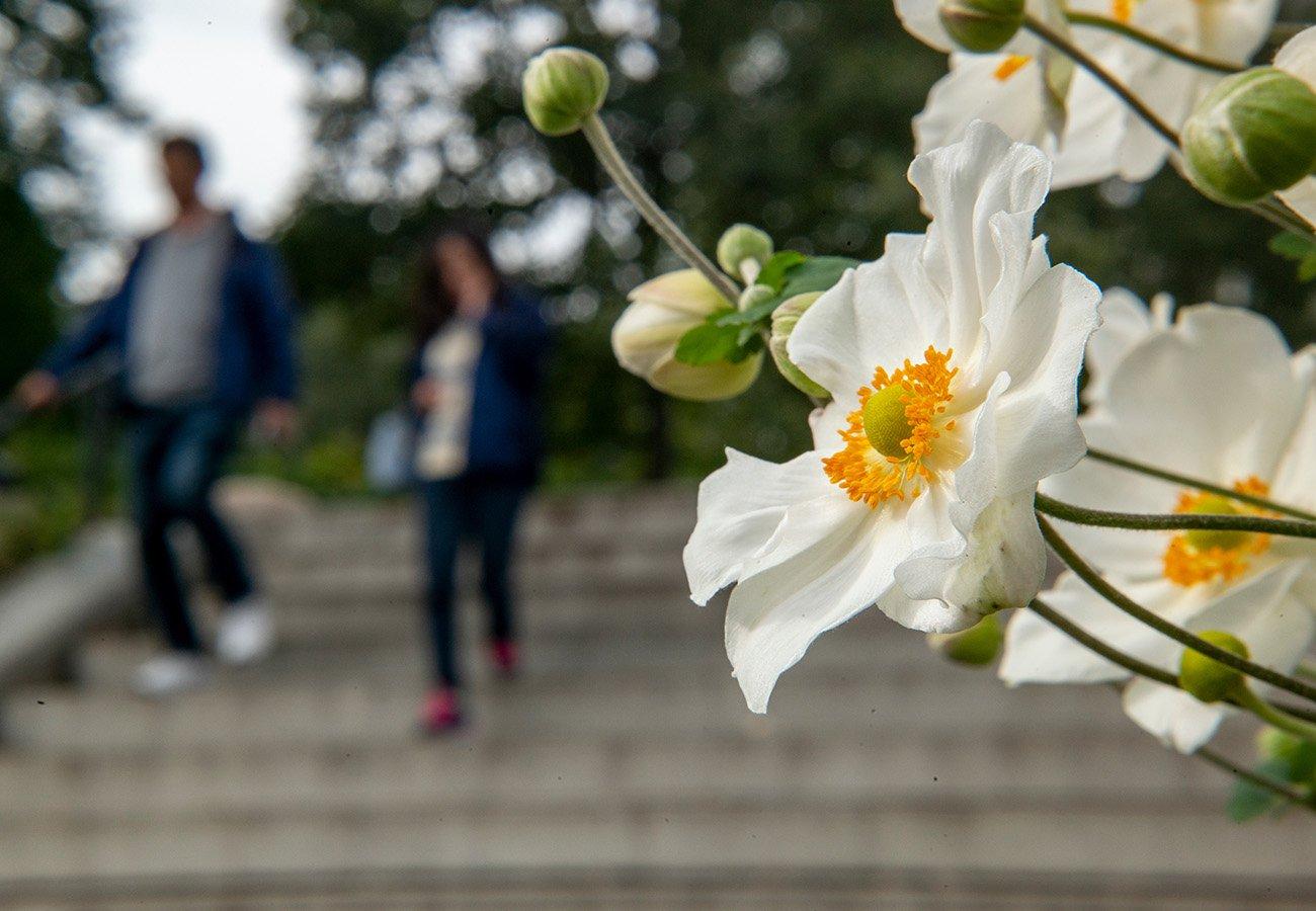 Visit Swarthmore :: Swarthmore College