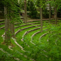 Amphitheater in spring with lush green growth