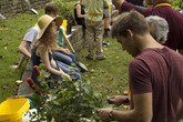 Students prepare their plants for the Crum Woods Stewardship Project.