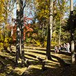 Scott Outdoor Amphitheater in the fall