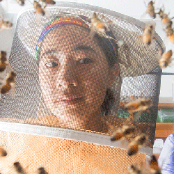 A student in a bee suit studies live specimens