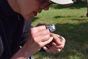 Sara Hiebert Burch examines hummingbird