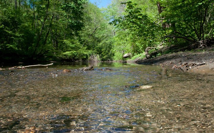 Summer shot of the Crum Creek