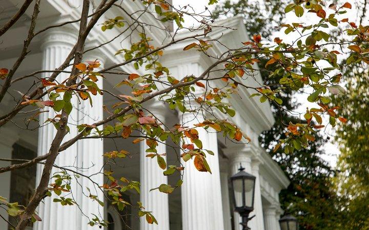 fall colors at parrish entrance