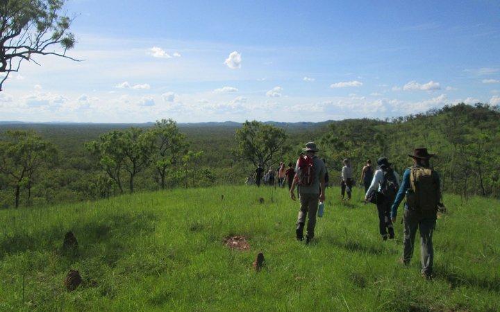group of students walking in green field