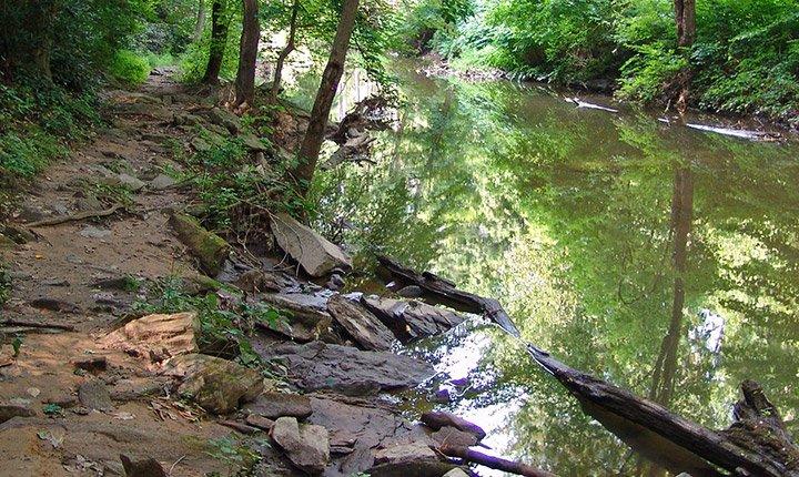 crum woods stream