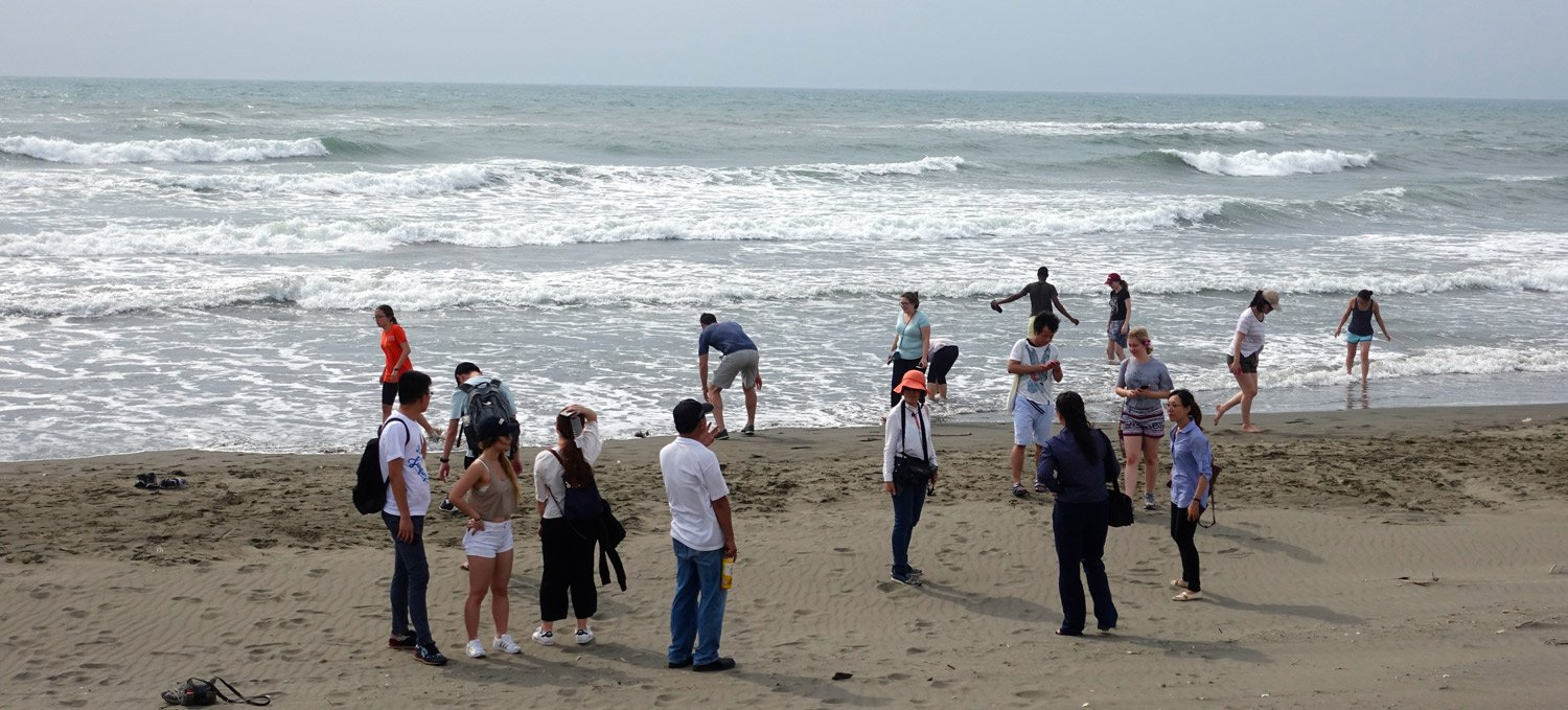 Chinese section study abroad group photo at beach