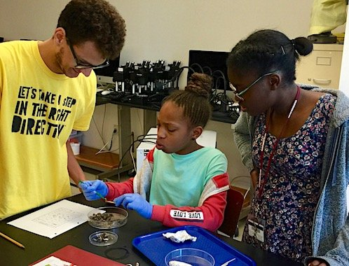 science for kids in the biology lab