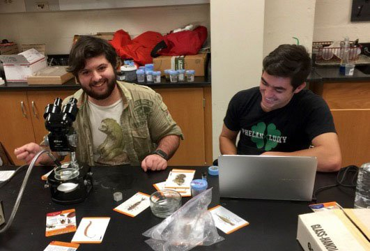 students doing research in a bio lab