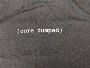 2018 shirt back: segfault