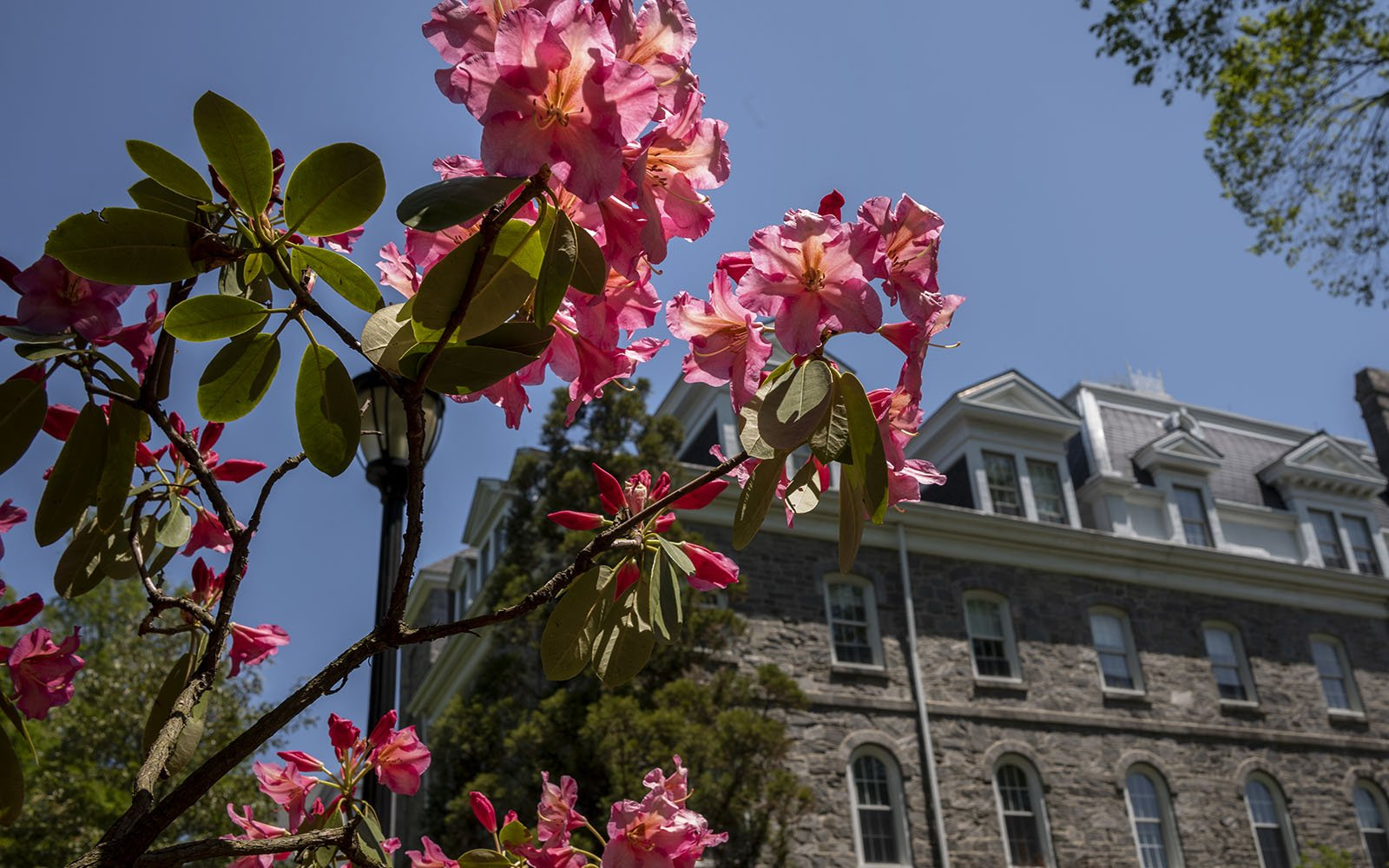 flower and parrish hall