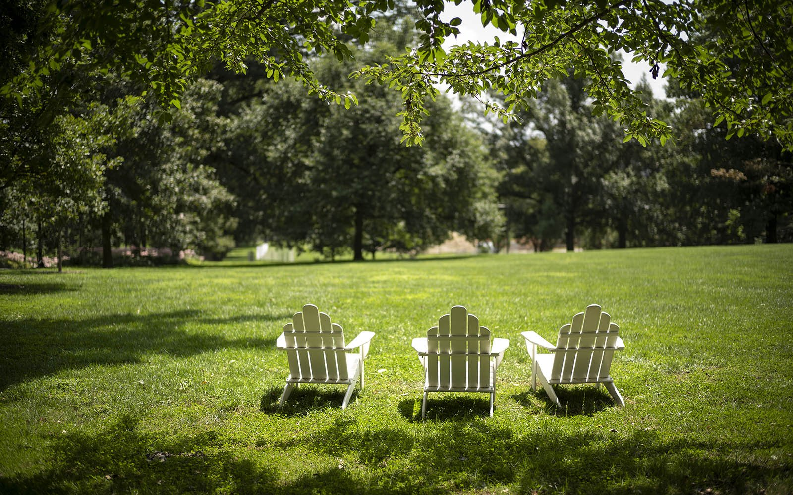 chairs of parrish beach