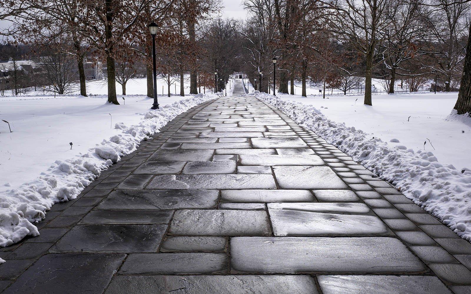 magill walk in the snow