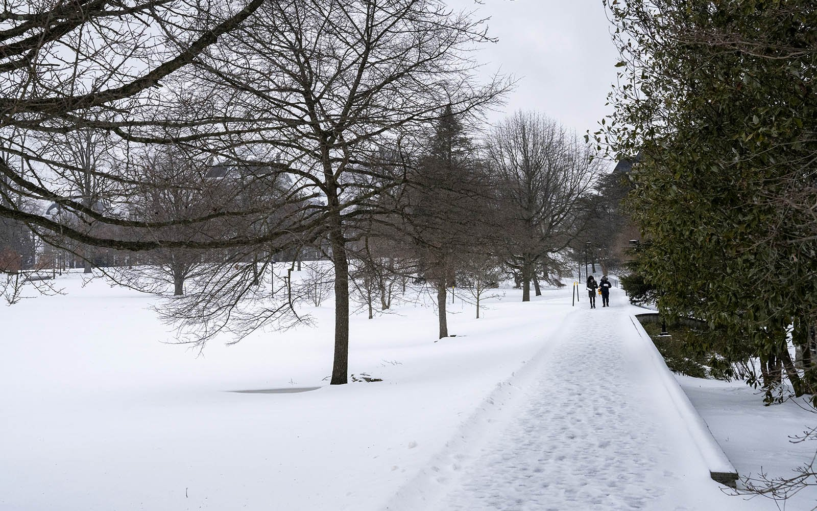 students walking in snow