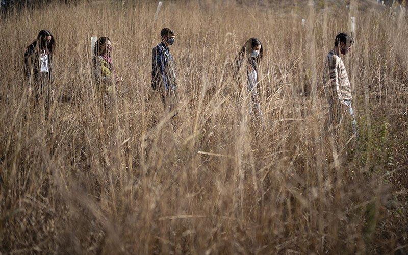 walking in grassy field