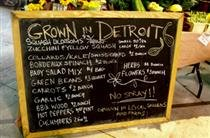Greening the Rust Belt: Urban Agriculture and Food Security in Detroit and Philadelphia
