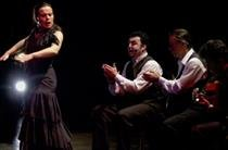Soledad Barrio and Noche Flamenca Performance