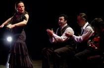 Soledad Barrio and Noche Flamenca Performance