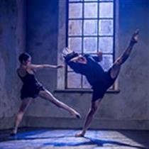 Sydney Dance Company: Performance