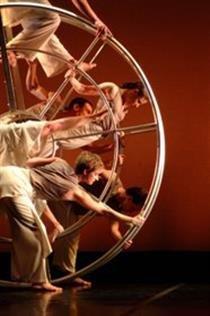Carolyn Dorfman Dance Company:  Master Class