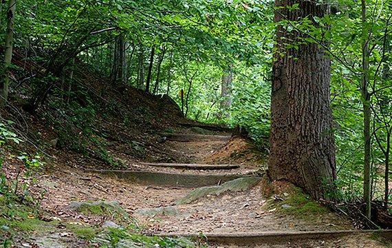 Crum Woods Trail
