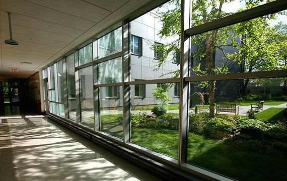 View of John W. Nason Garden from Science Center Hallway