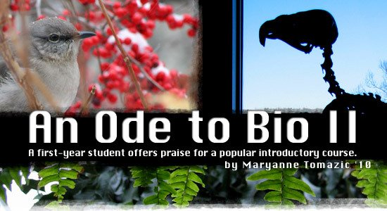 An Ode to Bio II by Maryanne Tomazic '10 A first-year student offers praise for a popular introductory course.