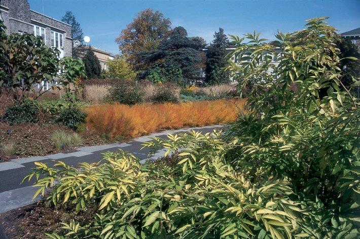 Nason Garden