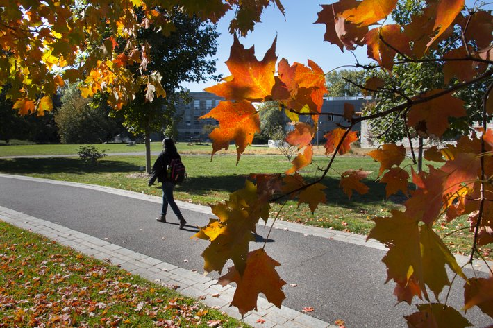 Student walking beneath fall foliage