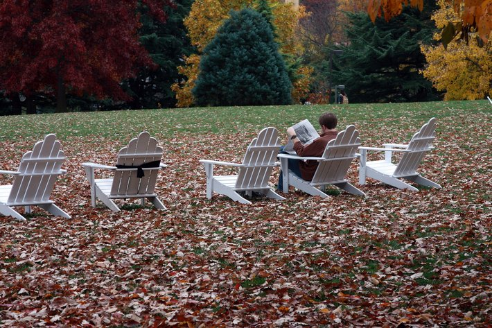 Adirondack chairs with fall leaves