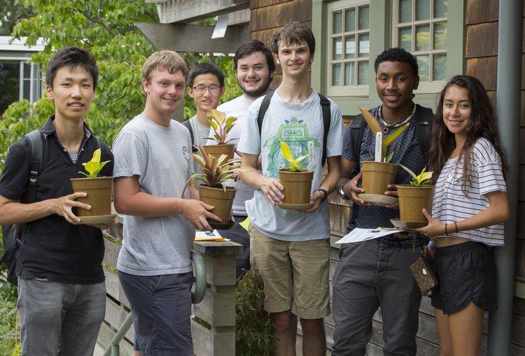 Orientation free plant giveaway