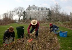 Grounds and Horticulture