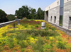 Alice Paul Hall green roof
