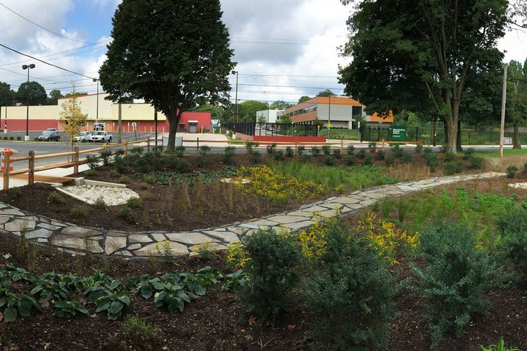 A rain garden built in the Overbrook section of Philadelphia as part of the stormwater management project.
