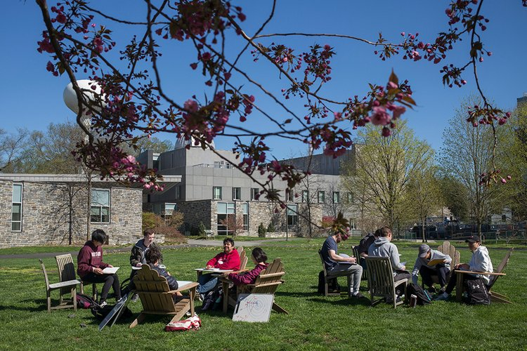 Students sit under tree in Science Center quad