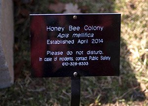 Bee Sign