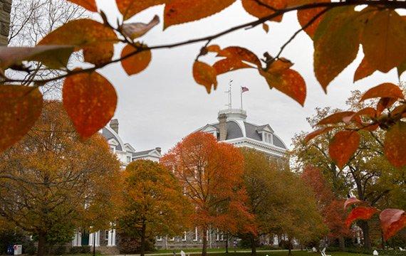 Fall Campus Scene