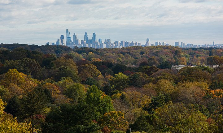 Philadelphia skyline seen above trees in fall