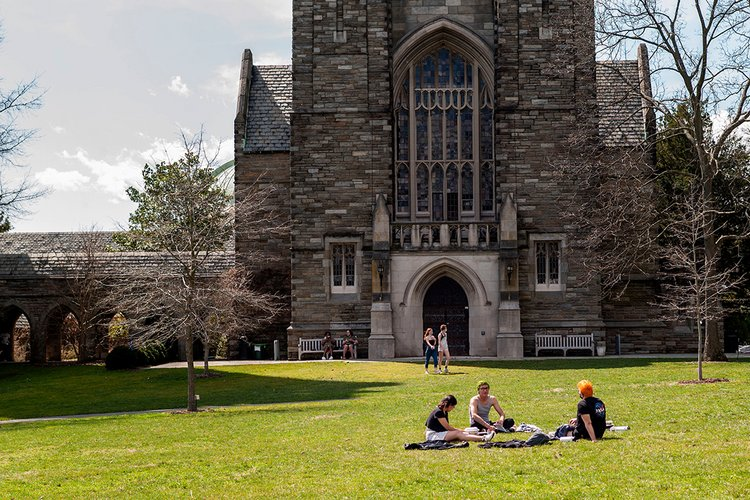 Students sit on green grass on sunny day.