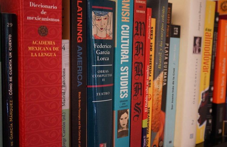 Spanish Novels on shelf.