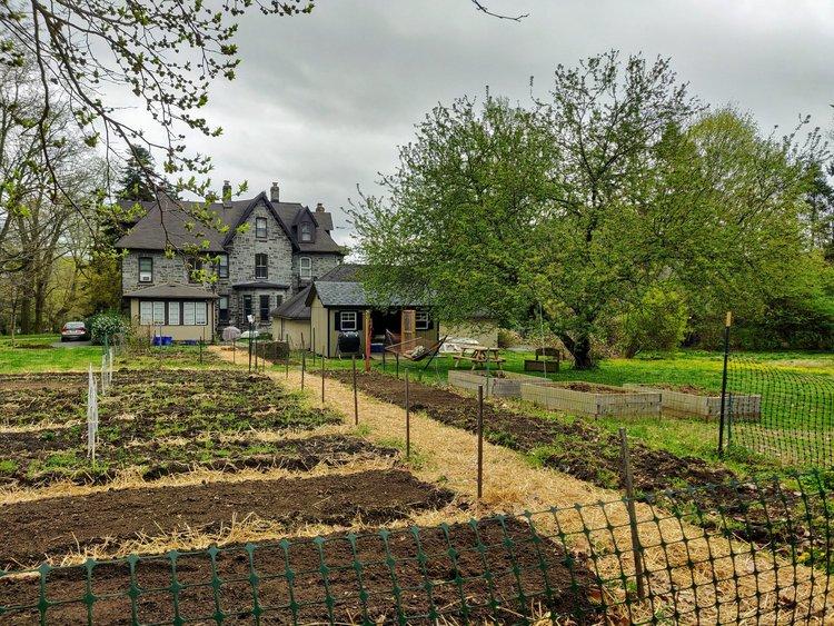 good food garden